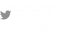 Client_logo_Twitter_NEON
